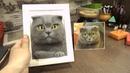 Кошечка Ирен Картина сделана в технике сухое валяния Портрет кото по фото