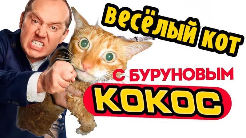 Кокос весёлый кот - Сергей Бурунов Мылодрама