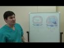Грыжа протрузия лечение Hernia a protrusion treatment