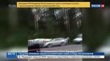 Новости на Россия 24  •  В Перми пассажирский автобус врезался в дерево