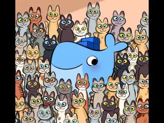 Среди кошачьих нет чужих Among cats, there are no strangers