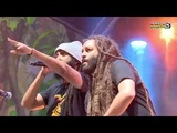ALBOROSIE &amp Shengen Clan ft DUANE STEPHENSON &amp members of THE WAILERS live @ Main Stage2018