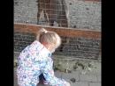 контактный зоопарк Люберцы