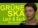 Ska Keller die Grünen die Meldungen der Woche Satire am Sonntag Late Night 1