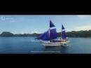 Дайвинг на Palau Siren