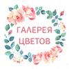 Galereya Tsvetov