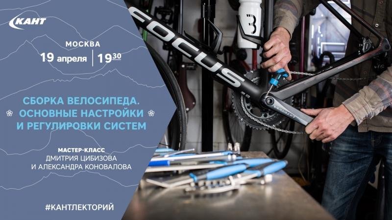 Сборка велосипеда. Основные настройки и регулировки систем.
