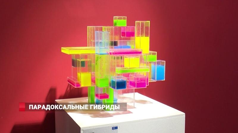 ПАРАДОКСАЛЬНЫЕ ГИБРИДЫ МЕДИА АРТ во Владивостоке