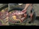 как правильно готовить уху 2.0 уха рыба суп