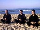 Vo Dao Thien Than Khi-Кong, Цигун мудры Большой обезьяны
