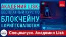 Академия Lisk полноценный бесплатный курс по блокчейну и криптовалютам