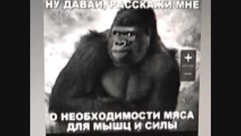 Video 5115. зачем тебе сила. хочешь быть быком телохранителем мордоворотом и титаном грузчиком
