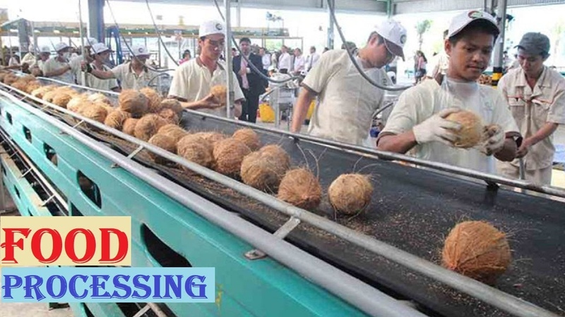 Amazing COCONUT Processing in Factory ★ Coconut Oil, Milk Water ★ Awesome Food Processing Machines