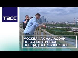 Москва как на ладони. Новая смотровая площадка в Лужниках