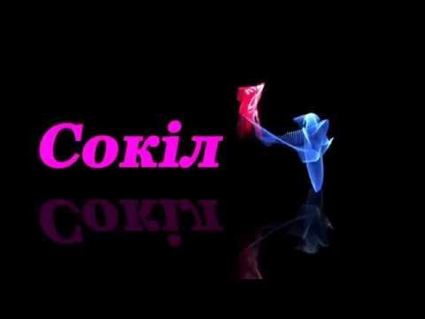 Сокіл (Хмельницький) - Динамо (Самара) - 2:3, Турнір у Гомелі, 1 тур