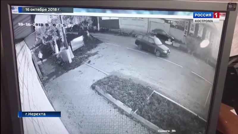 Пьяному водителю, сбившему деда с внуком в Нерехте, вынесли приговор