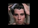 Bee Gees - Saturday Night Fever (Dim Zach ReWork)