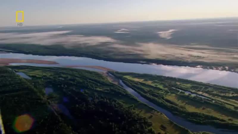 Дикая природа России. Таёжный край.