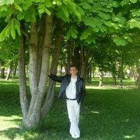 Денис Грибков