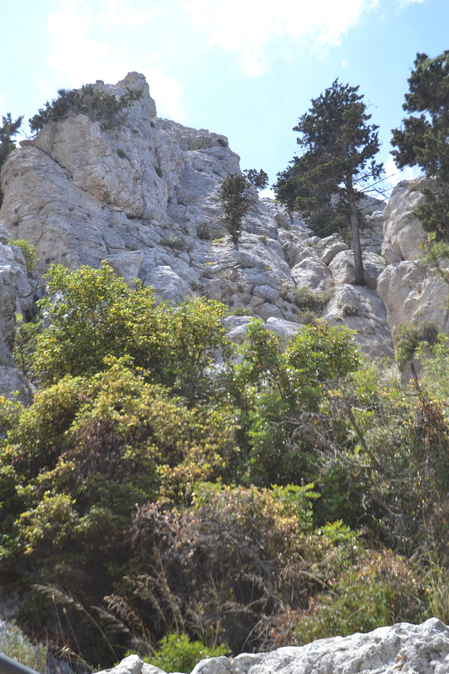 Северный Кипр. Замок Святого Иллариона. (фото). - Страница 2 41RdggzUWl4