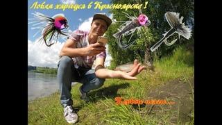 Ловля Хариуса на Енисее в Красноярске