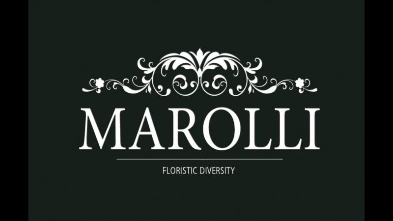 Marolli floristic diversity