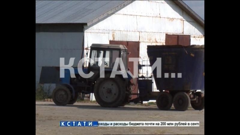 В Семеновском районе нашли способ поднять плодородность земли