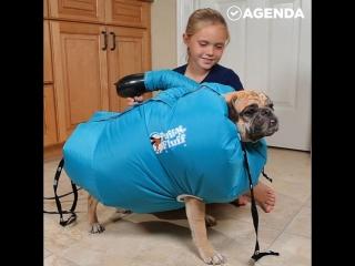 Девочка придумала сушилку для собак