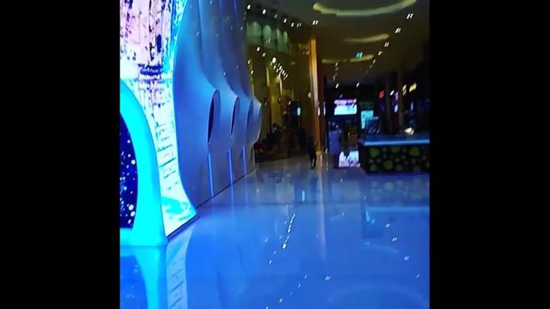 Абу Даби парк ОАЭ