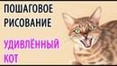 КОТ. Рисуем кота поэтапно. Пошаговое рисование животных. How to draw Surprised cat step by step.