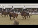 Выступление курсантов Кремлевской конно-спортивной школы на фестивале Спасская башня