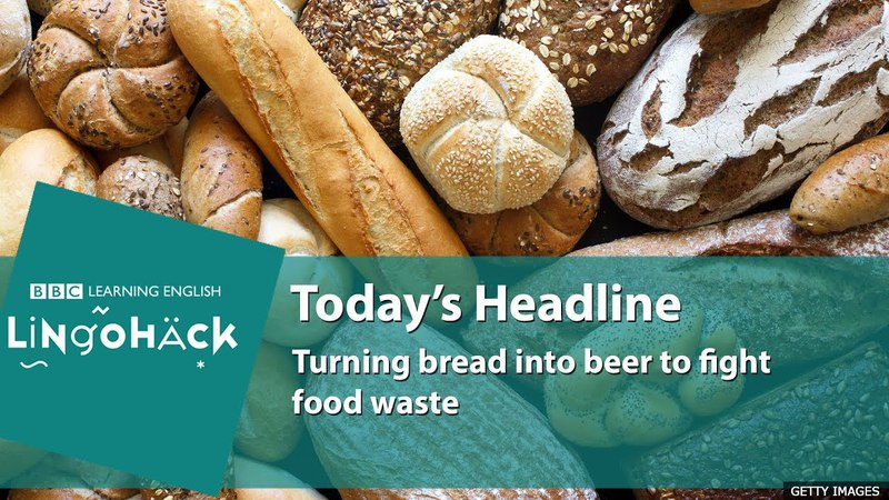 Learn today's words and phrases: stale bread, leftover, niche, raising awareness