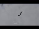 ВТС Hercules C-130J показывает мёртвую петлю на авиашоу Farnborough Airshow 20