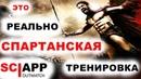 СПАРТАНСКАЯ ТРЕНИРОВКА 300 повторений Джефф Кавальер