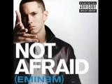 Eminem - not afraid cover