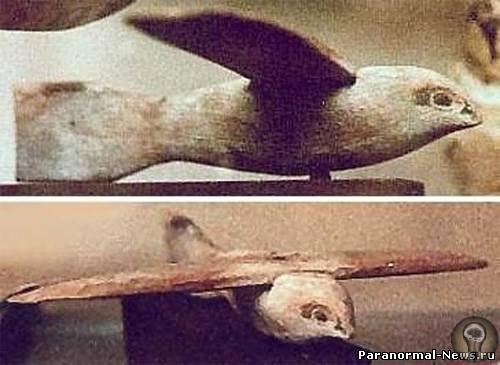 Авиация древних: мнение профессионального летчика