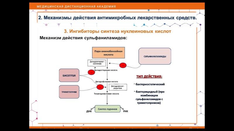 Видеоурок №6 Фармакология Ф Лекция №6 Антимикробные препараты