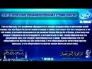 шейх Бадр аль Утайби - совет относительно поведения и призыва в странах неверия