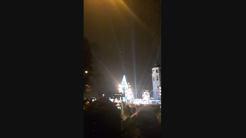 открытие елки в Вильнюсе