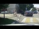 Пешеход против водителя