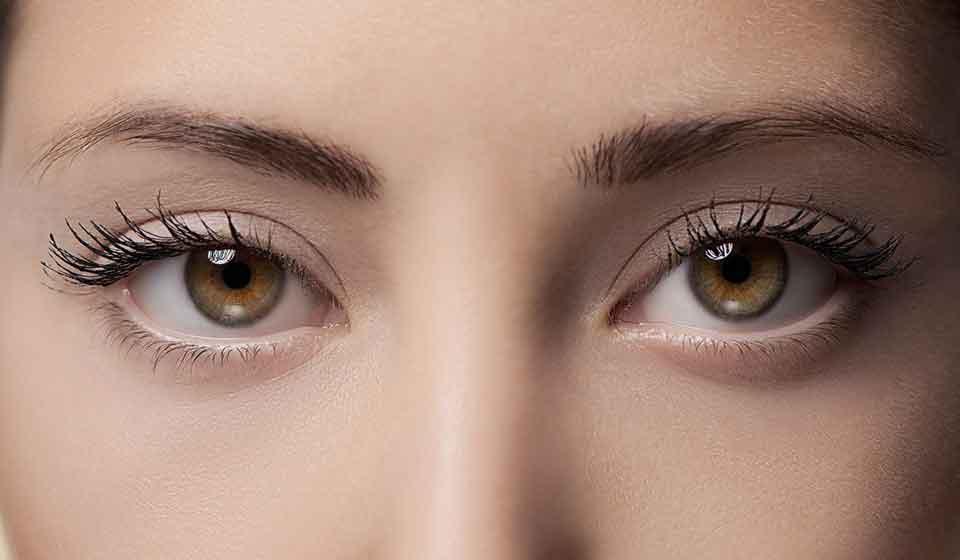 Глазные мушки