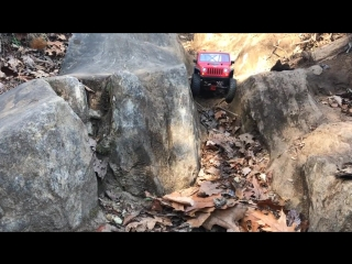 2018 Jeep Wrangler rc forest off-road