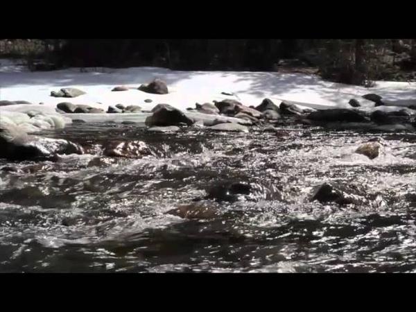 Schumann Resonances | Relaxing Nature Sounds | 7.83 Hz Binaural Beats