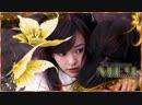 Меч и бабочка/ Meteor, Butterfly, Sword/ 流星蝴蝶剑 - 11/30