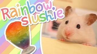🌈 Rainbow Slushie   HAMSTER KITCHEN 🌈