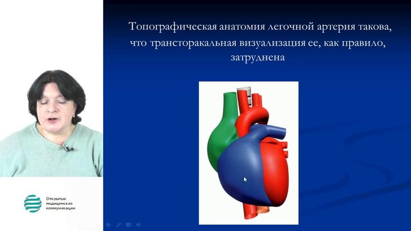 Лёгочная гипертензия эхокардиография Рыбакова М К вебинар 19 10 2017