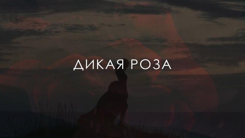 Дикая роза - BookTrailer(2018)