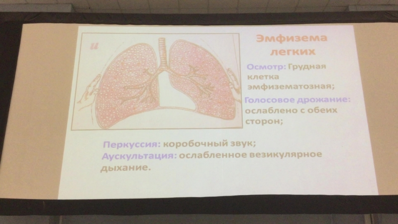 Методы исследования органов дыхания 2 Часть 4