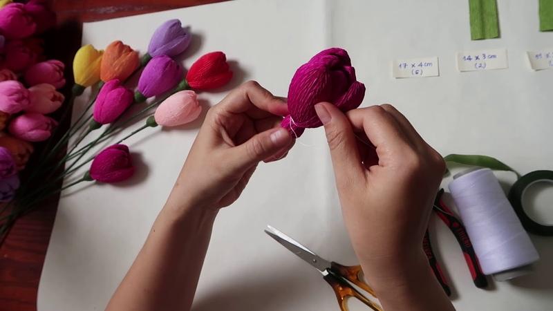 Cuộc sống quanh ta - Số 29: Làm hoa tulip bằng giấy nhún.