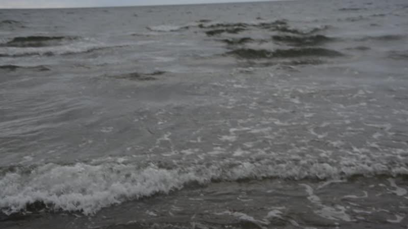 Балтийское море , пляж , песок, единственное подвела погода а так очень красиво морской воздух